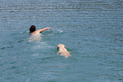 swimming Stock Fotografie