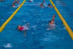 swimming immagine stock