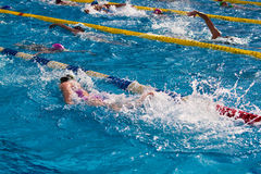swimming fotografia stock