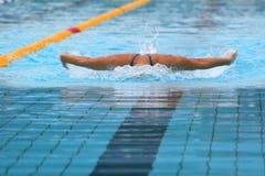 Swimming Stock Photos