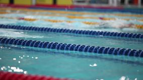 Swimming backstroke in a race. The athlete Swimming backstroke competition stock video