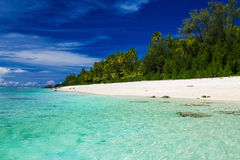 Swimming beach with palm trees on tropical island Rarotonga, Coo Stock Photos