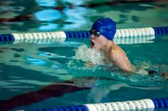 Swimming breaststroke Stock Image