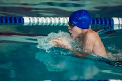 Swimming breaststroke Royalty Free Stock Photos