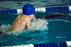 Swimming breaststroke Royalty Free Stock Photo