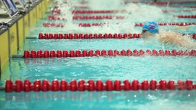 Swimming Butterfly Stroke. Swimming competition style butterfly close to turn stock footage