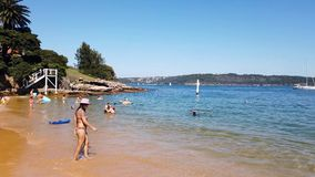 Swimming at Camp Cove Beach, Sydney Harbour, Australia. Early summer morning swimming at the family friendly quiet yellow sand Camp Cove Beach, Watsons Bay stock video