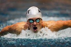 Swimming Championship 2009 Stock Image