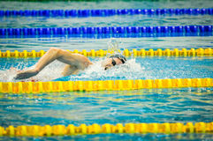 Swimming championship Royalty Free Stock Photography