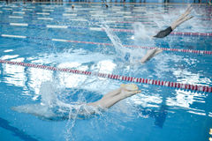 Swimming championship Royalty Free Stock Photo