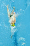 Swimming championship Royalty Free Stock Images