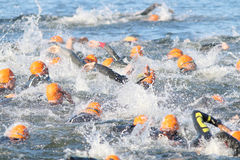 Swimming chaos of male swimmers wearing orange bathing caps. STOCKHOLM - AUG 23, 2015: Swimming chaos of crawling male swimmers wearing orange bathing caps at Stock Photography