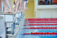 Swimming competition. For young females Stock Image