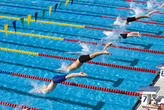 Swimming competition Stock Photo