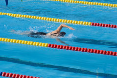 Swimming competition Royalty Free Stock Images