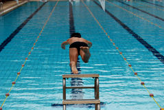Swimming competition. Help at the sport center royalty free stock images