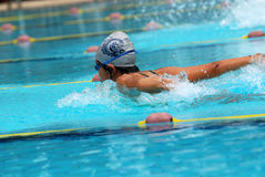 Swimming competition. Help at the sport center stock images