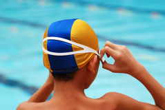 Swimming competition. Help at the sport center royalty free stock image