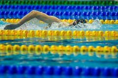 Swimming competition Royalty Free Stock Image
