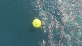 Swimming competition stock footage