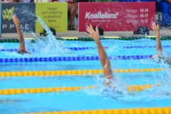 Swimming competition close-ups in pool Stock Image