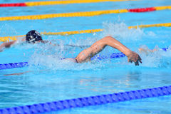 Swimming competition close-ups in pool Royalty Free Stock Photos
