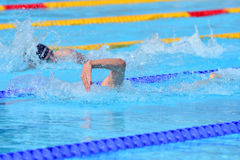 Swimming competition close-ups in pool Stock Photography