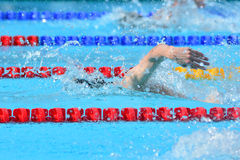 Swimming competition close-ups in pool Stock Images