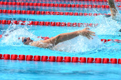 Swimming competition close-ups in pool Royalty Free Stock Image