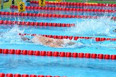 Swimming competition close-ups in pool. Swedish championship in  2014 swim Royalty Free Stock Photos