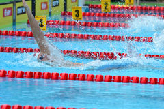 Swimming competition close-ups in pool. Swedish championship in  2014 swim Royalty Free Stock Images