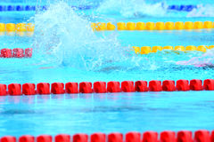 Swimming competition close-ups in pool. Swedish championship in  2014 swim Royalty Free Stock Photo
