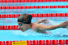 Swimming competition close-ups in pool Royalty Free Stock Photography