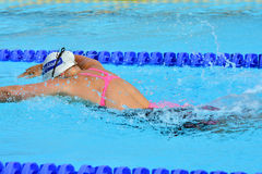 Swimming competition close-ups in pool Stock Photos