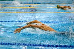 Swimming competition group athletes. Swimming butterfly stroke in pool stock image