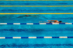 Swimming competition Royalty Free Stock Photo