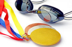 The swimming competitions winners. Stock Image