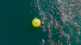 Swimming compettion stock footage