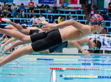 Swimming contest stock images