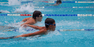 Swimming contest Royalty Free Stock Photography