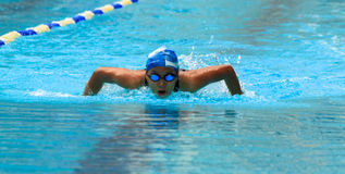 Swimming contest Royalty Free Stock Images