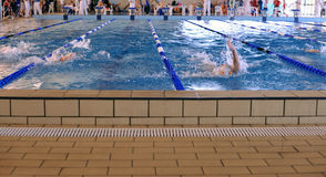 Swimming contest. First lap for teenagers during a swimming contest Royalty Free Stock Photography