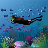 Swimming diver in colorful underwater environment Royalty Free Stock Photography
