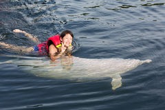 Swimming with dolphin. Female teenager swim with fish stock photo