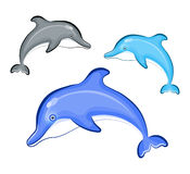 Swimming Dolphin isolated on background Royalty Free Stock Photos