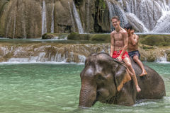 Swimming with an Elephant stock image