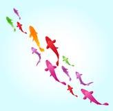 Swimming fish background Stock Photo
