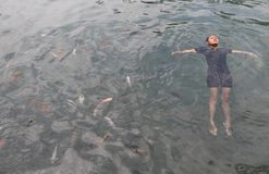 Swimming with fish Stock Photo
