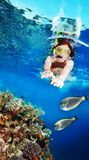 Swimming with the fishes. Happy female woman snorkeler diving among corals and fishes Royalty Free Stock Image