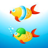 Swimming fishes. Young fishes learning to swim with helmet and rubber ring Royalty Free Stock Image